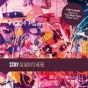 pochette STAY - ALWAYS HERE