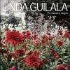 pochette LINDA GUILALA - PRIMAVERA NEGRA